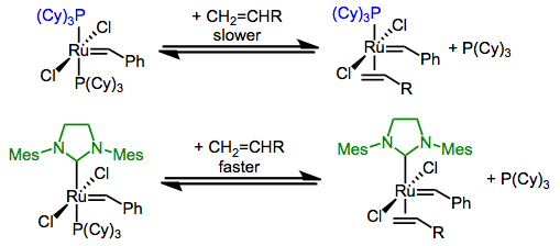 Phosphine dissociation, and thus olefin metathesis, are sped up when a phosphine is replaced with an NHC.