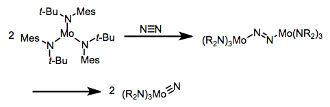 "Activation of dinitrogen by molybdenum—an ""end-end"" bridging nitrogen (not shown) is proposed as an intermediate in this mechanism."