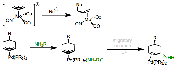 External and internal attack of nucleophiles on coordinated allyl ligands.