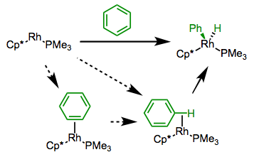 Mechanistic possibilities for the oxidative addition of arene C–H bonds.