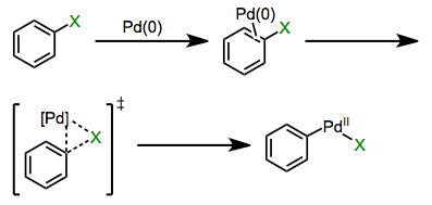 Concerted oxidative addition of aryl halides and sulfonates.