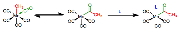 Migratory insertion into a metal-carbon bond.