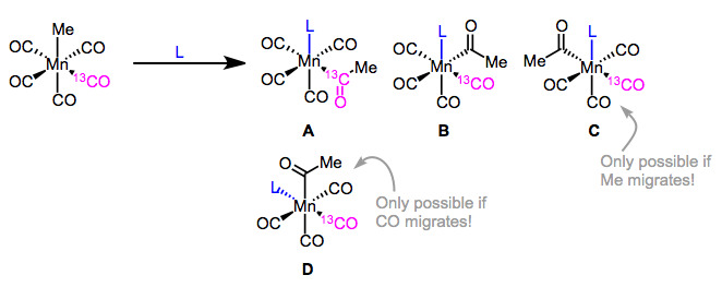 Insertion of the labeled complex shown could produce four products. Calderazzo did not observe product D, supporting an Me-migration mechanism.